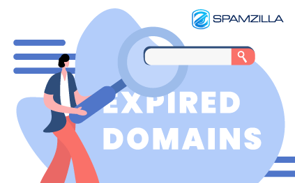 What Is an Expired Domain Finder?